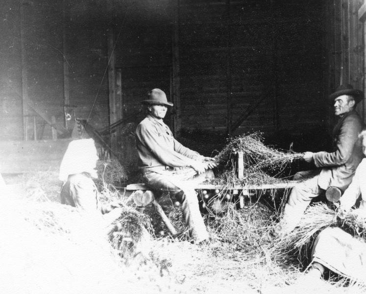 1918 Linet kammas