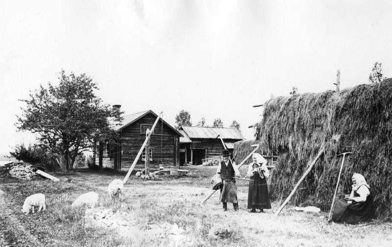 Krångull-gården i Bengtsarvet 1906