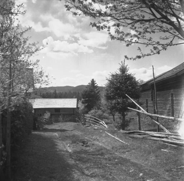 Svenbacken