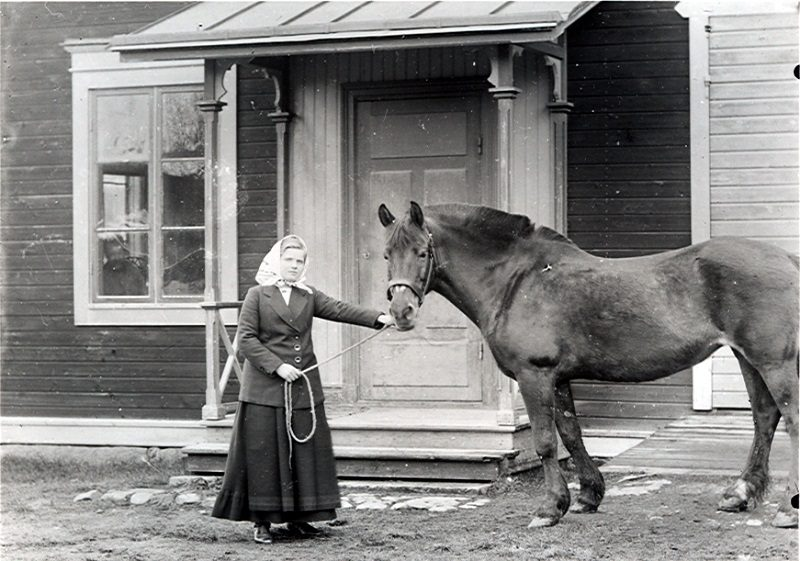 082 Linnea Erlandsson Budsel