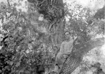 Man i träd