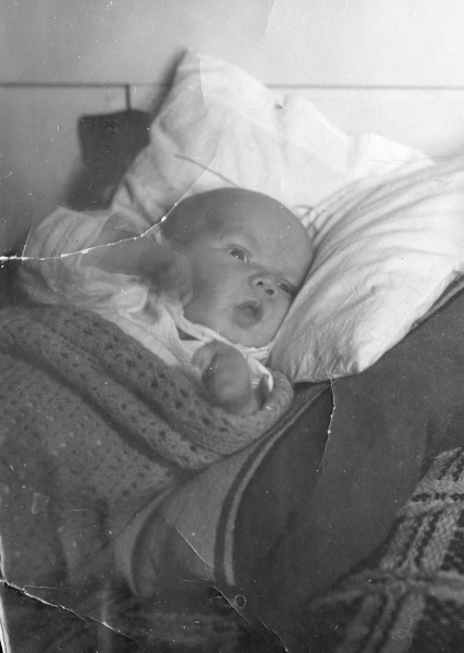 Åll Bertil 3 veckor gammal