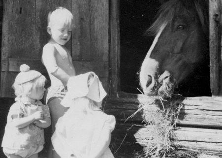 Barn på besök hos hästen