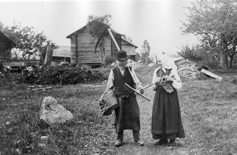Slåtterfolk 1906