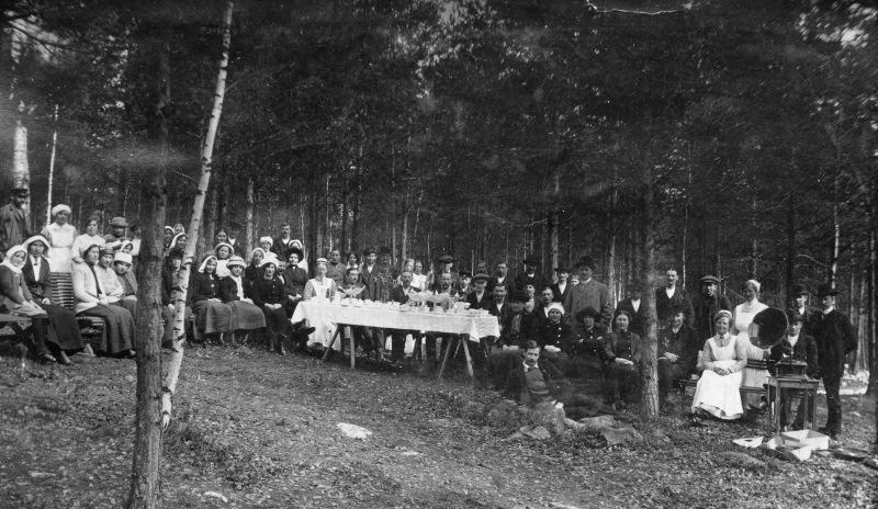 Fest i skogen