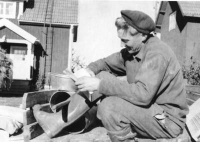 Tröskning 1954