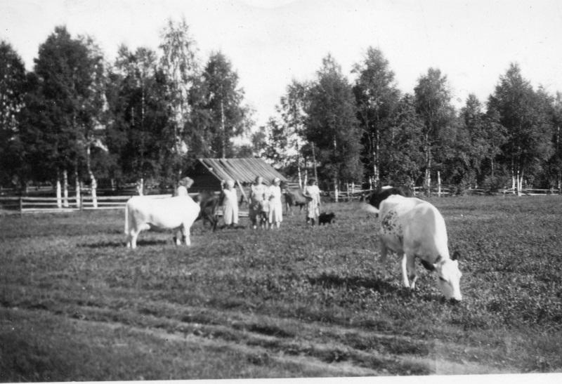 Grömings smedjan 1950