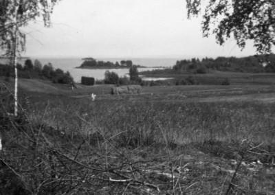 Gesunda 1935