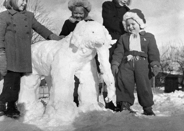 Snöelefant