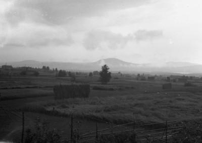 Utsikt mot Gesundaberget