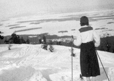 Utsikt från Gesundaberget