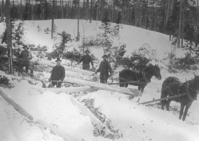 På Orsa-skogen 1907