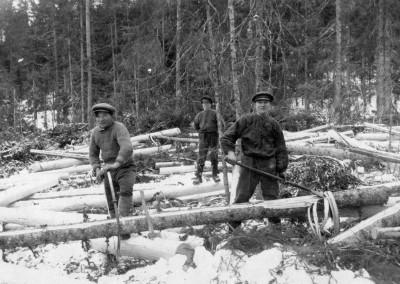 Skogsarbete